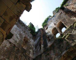 Safari culturale a caccia di castelli e ville venete_6_proMuovendo