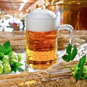 Di nuovo birra. Sempre con Slow Food